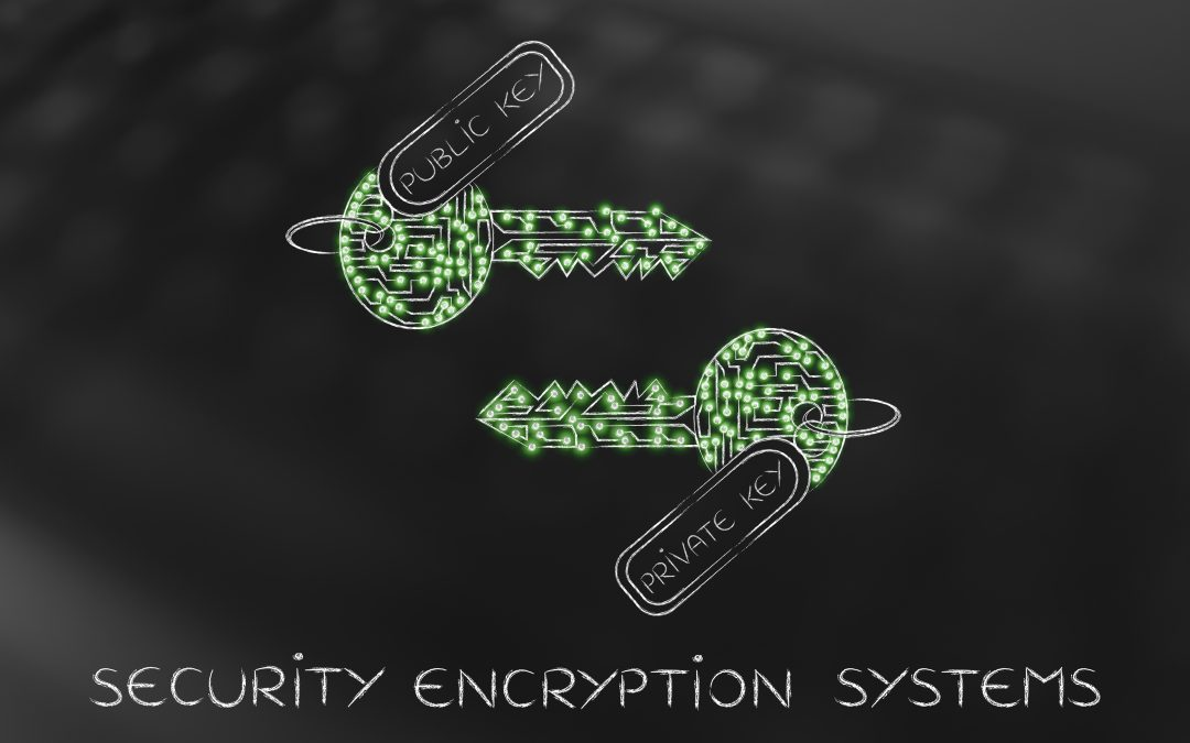 Approaches to System Security: Using Cryptographic Techniques to Minimize Trust