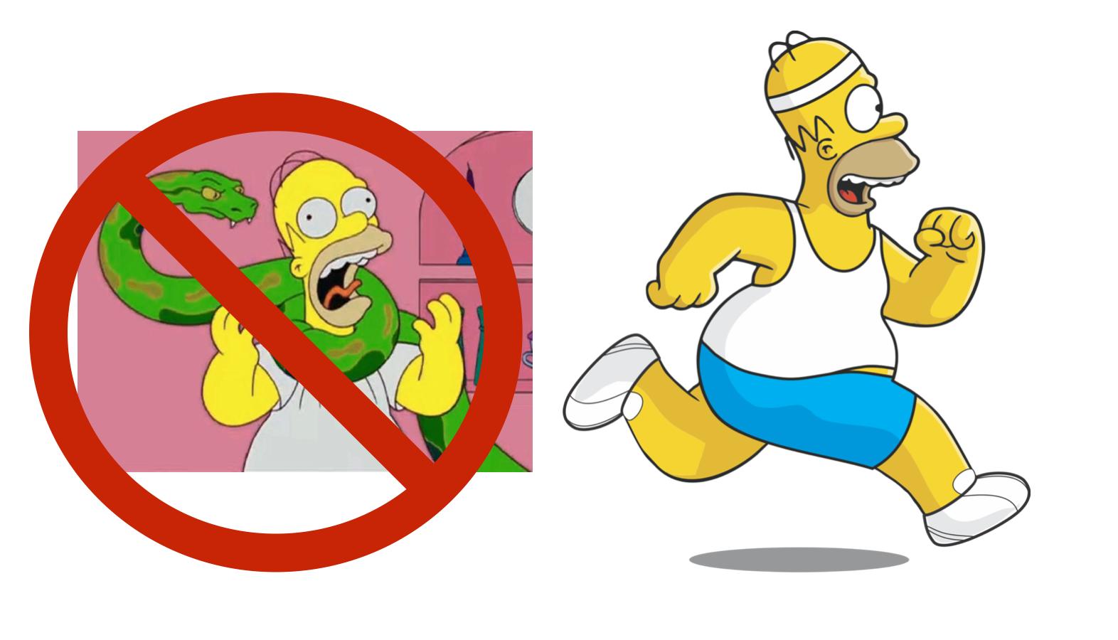Fast Homer